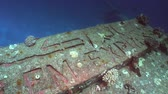 salem express : Lettering Salem Express shipwrecks underwater in the Red Sea in Egypt. Extreme tourism on the ocean floor in the world of coral reefs, fish, sharks. Researchers of wildlife blue abyss. Deep diving.