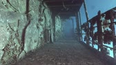 salem express : Deck of sunken ship Salem Express shipwrecks underwater in the Red Sea in Egypt. Extreme tourism on ocean floor in world of coral reefs, fish, sharks. Researchers of wildlife blue abyss. Deep diving.