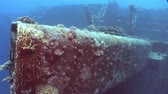 salem express : Corals on part of sunken ship Salem Express close up underwater in Red Sea. Extreme tourism on ocean floor in world of coral reefs, fish, sharks. Researchers of wildlife blue abyss. Deep diving. Stock Footage