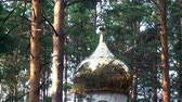ölen : Alapaevsk, Russia - 17 July 2012: Gilt dome of monasteryof New Martyrs at venue death of Romanov. Building is located on spot where on July 18, 1918 Elizabeth and princes were dumped alive in mine. Stok Video