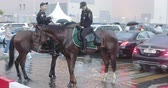 heavy : Mounted police among the fans Stock Footage
