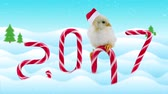 horoskop : New Years day card 2017 with symbol of the Chinese calendar (includes text), new born cute rooster sitting on the candy cane and then falls in to snow, winter background and snowfall