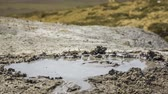jev : Close-up shot of a mud puddle with bubbles coming out of it. Footage near Kerch, Crimea. RAW format.