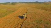 linha do horizonte : AERIAL VIEW. Old combine harvesting. Small farms. The area with hills and uplands. Uneven field. The camera rises revealing features of the local landscape. Vídeos