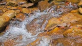The flow of a mountain river over rocks Stock Footage