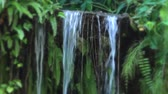 canales : A sound of waterfall in the rock cliffs Archivo de Video