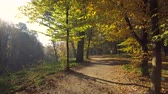 ramo : Walk Along the Path with Leaves in Autumn Park