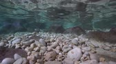 calçada : Underwater pebbles and rocks in shallow water with the ripples of water surface inside a cave, natural light, Mediterranean sea, Catalonia, Costa Brava, Cala Montgo, lEscala, Spain