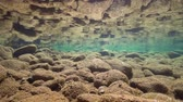 reflected : Rocks in shallow water on the riverbed reflected in the water surface, underwater scene, La Muga, Girona, Alt Emporda, Catalonia, Spain Stock Footage