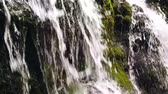 shallow depth of field : Slow motion of a small mountain waterfall. The mountain stream falls down on stones in a bottom. Stock Footage
