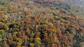 Aerial Footage View. Flight over autumn mountains with forests, meadows and hills in sunset soft light. Wideo