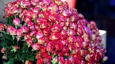 submerso : Huge bunch of pink roses. 101 rose is donated to the day of all lovers Stock Footage