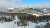 Украина : Panorama of the mountain range with trees covered with snow in Sunny weather. Winter view of the Carpathian mountains