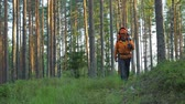 dureza : Lumberjack walking home after work in the forest