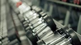 ginásio : Hands of Strong Female Athlete Taking Heavy Dumbbells During Workout in the Gym Pan