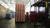 distribuidor : Move boxes with fruits on loading machine. After unloading wagon of train bags of apples carry in storage chamber on forklift. Distributor of foodstuffs imported for resale. Order for carriage for eat Vídeos