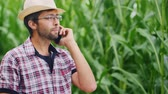 adult : Attractive young farmer in hat speaks by mobile phone, smiling. Against a blurred background field with corn.