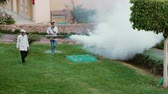 crop duster : Sharm el Sheikh, Egypt, March, 2017: Fumigation of the garden. Destruction of parasites and harmful insects in the hotel garden. Stock Footage