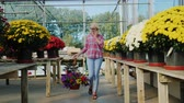 flower growing sun : A woman goes to a flower shop, carries a flower pot and talks on the phone. Purchase of flowers concept Stock Footage