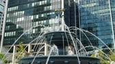 architektonický : Toronto, Canada, October 2017: Fountain with sculptures of dogs and cats. Water jets run to the bone at the top