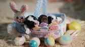animal egg : Funny puppies in a basket with a decorative rabbit, next to the Easter eggs. Preparation for Easter and favorite pets