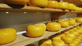 empilhados : Counter with circles of farm cheese. Several shelves with Dutch cheese