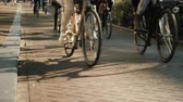 A lot of bicycles drive along a narrow street. In the picture only the wheels are visible, there are no recognizable people. Ecologically clean transport in Europe Stock Footage