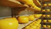 drying rack : Shelves with circles of farm cheese