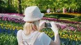 A tourist dressed in light clothes takes pictures of flowerbeds in the Keukenhau park in the Netherlands. Tourism in Europe concept Stock Footage