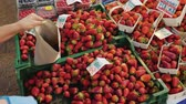 comerciantes : The seller puts fresh strawberries from the counter into the package for the buyer. On the price lists are written the words strawberries and raspberries in Polish