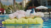 banhos de sol : Side view: A cool rabbit in sun glasses glows on an inflatable mattress. Floats in the pool. Vacation with children Vídeos