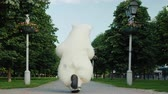 povznášející : Funny huge white bear dancing in the park