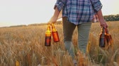 tentação : A woman carries four bottles of cool beer, walks the field of wheat. Mens fantasy concept Stock Footage