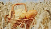summer concept : Basket with bread and rolls on the field of mature yellow wheat. Good harvest and fresh organic products concept Stock Footage