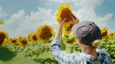 arka görünüm : A woman farmer is studying the sunflower flower carefully. Home farm, organic products. Rear view
