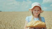 クエンチ : Portrait of a girl with a loaf of bread. Standing on the wheat field, looking at the camera