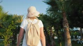 表示回数 : A tourist with a pink backpack behind her back walks along the avenue of palm trees. Rest and new impressions of the concept