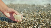 seixos : A womans hand holds a pebble against the background of the surf.