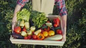 ládakeret : Top view: The farmer is holding a wooden box with a set of various vegetables. Organic farming and farm products