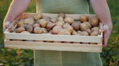 падение : The farmer is holding a wooden box with potatoes