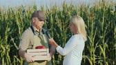 journalist : A television reporter interviews a farmer. Against the background of a field with corn