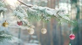 flare light : Beautiful ornaments on a snow-covered Christmas tree Stock Footage
