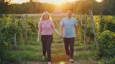 vinná réva : Happy young couple walking through a vineyard at sunset. Asian man and Caucasian woman