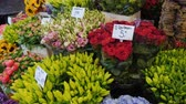 vitrin : Showcase with fresh flowers and price tags on the famous flower market in Amsterdam Stok Video