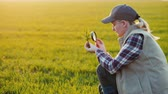 magnifying glass : Young woman agronomist studying sprouts on the field Stock Footage