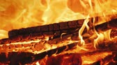 fűtés : The fire burns in the fire chamber of the fireplace. Slow Motion Video