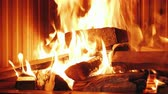 ogrzewanie : The man puts firewood in the fireplace insert. Heating by a modern fireplace