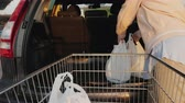 A woman unloads shopping bags from a basket in the trunk of a car