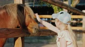 Girl strokes a cute pony that looks out from behind the fence