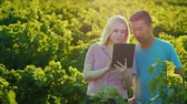 magánélet : Asian man and caucasian woman work together in the garden, use tablet